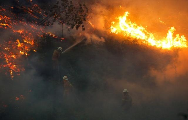 Firefightes work to put out a forest fire near the village of Fato, central Portugal, June 18, 2017. REUTERS/Rafael Marchante