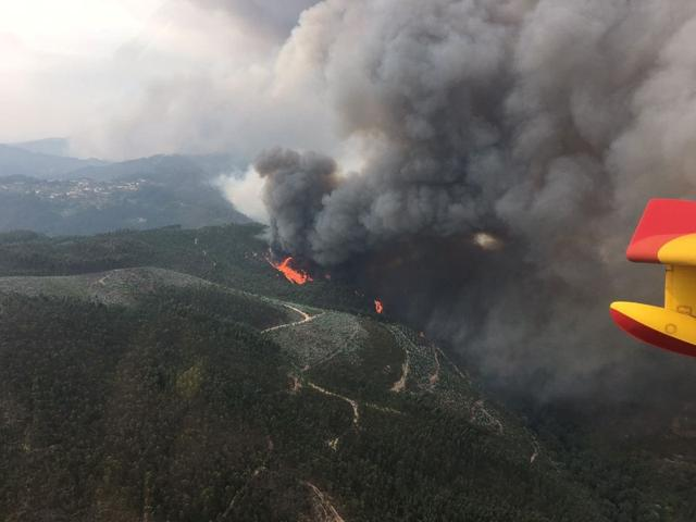Aerial view of a forest fire is seen from the cabin of a Spanish 43 Grupo fire fighting plane near Pedrogao Grande, Portugal, June 19, 2017. Spanish Defence Ministry-Spanish Air Force/Handout via REUTERS