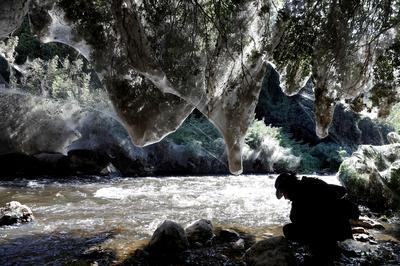 Jerusalem's tangled webs