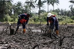 Cleaning up the Niger Delta