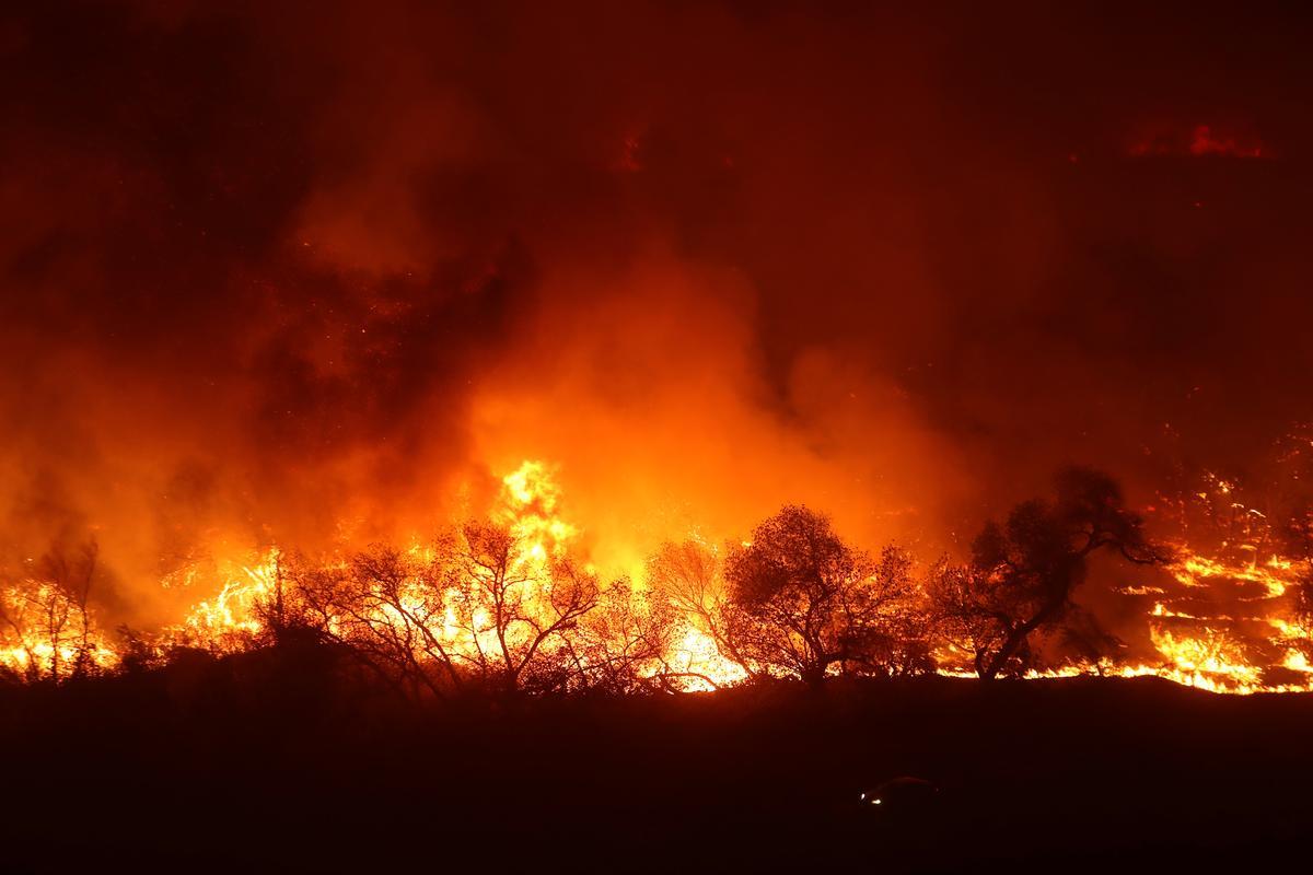 米カリフォルニア州の山火事「トーマス」、史上3番目の規模に