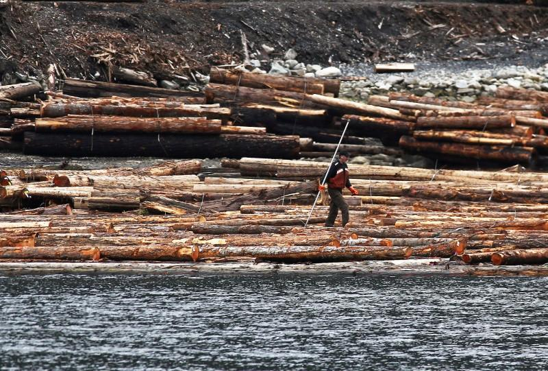 Canadian Softwood Lumber Export Growth To Decrease With Possible U S Duties