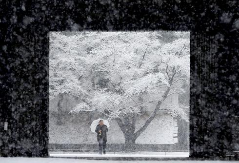 Tokyo digs out from snowstorm