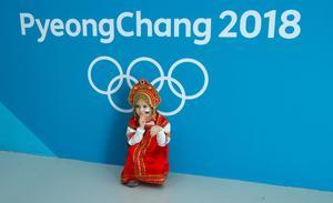 Pyeongchang fans
