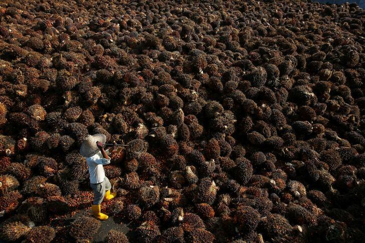 malaysian palm oil industry new market Central asia has been considered as a new market for malaysian palm oil the growing demand for palm oil, particularly in the food industry.