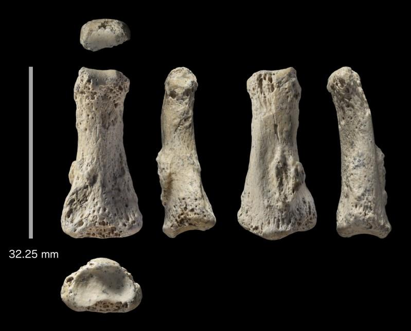 Fossil Homo sapiens finger from Saudi desert is 90,000 years old