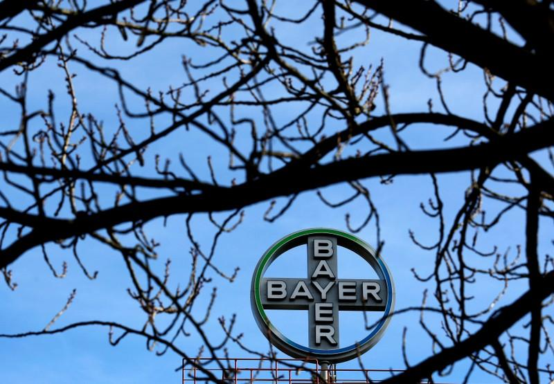 Kws Seeks To Buy Bayers Vegetable Business Countering Basf Reuters