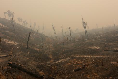 California's blazing Carr Fire