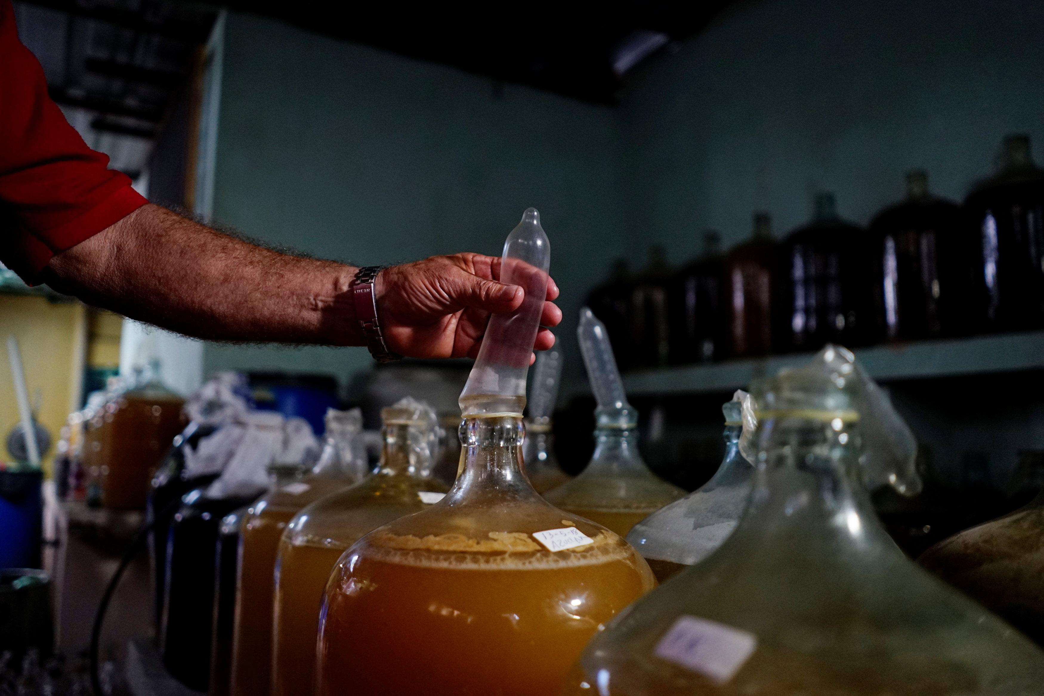 Orestes Estevez checks a condom used in the production of wine in his makeshift winery in Havana, Cuba, May 16, 2018. Picture taken on May 16, 2018. Alexandre Meneghini
