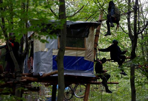 German police clear protesters from ancient forest