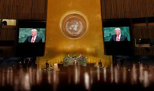 Inside the U.N. General Assembly