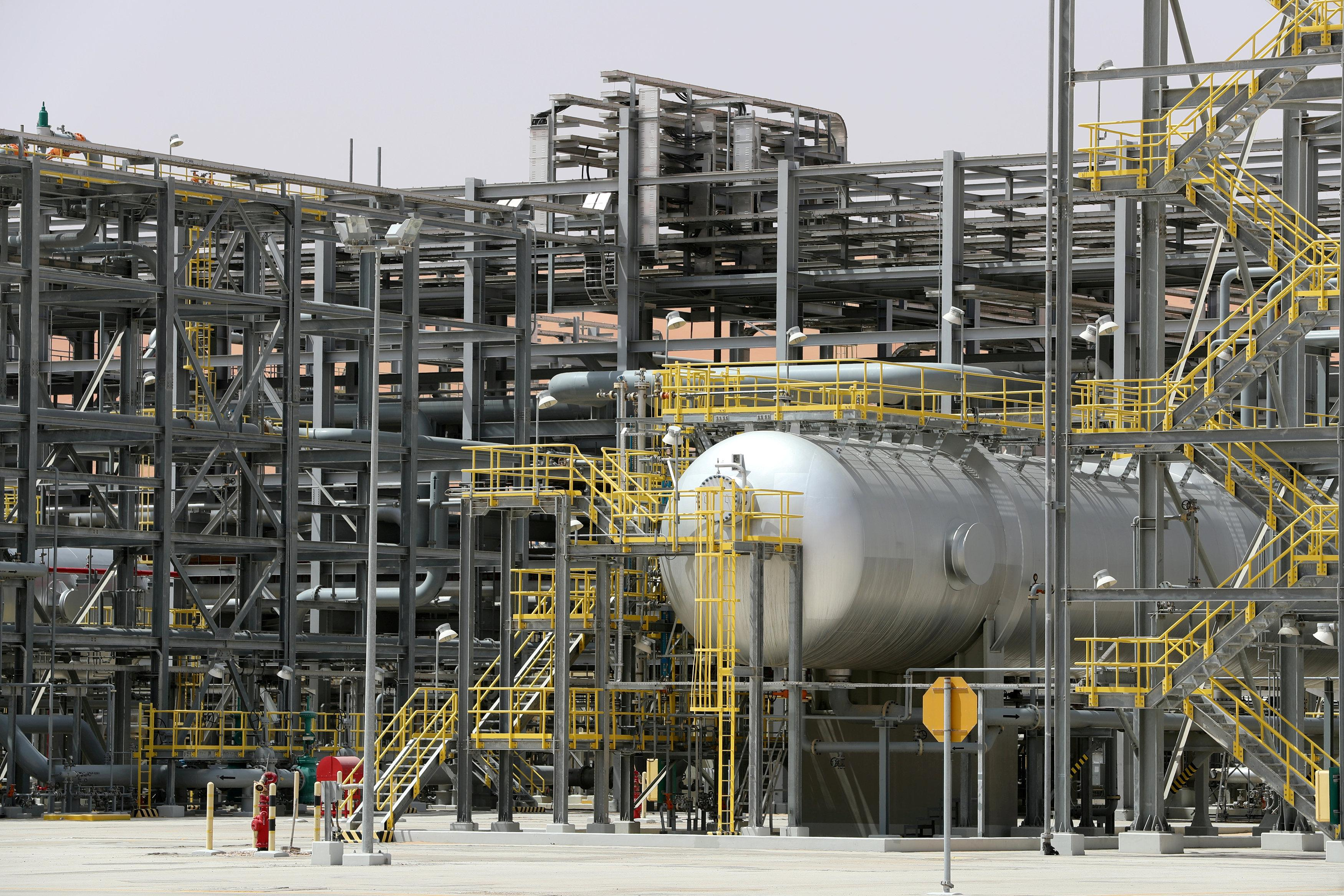 Saudi economist who criticised Aramco IPO charged with terrorism:...