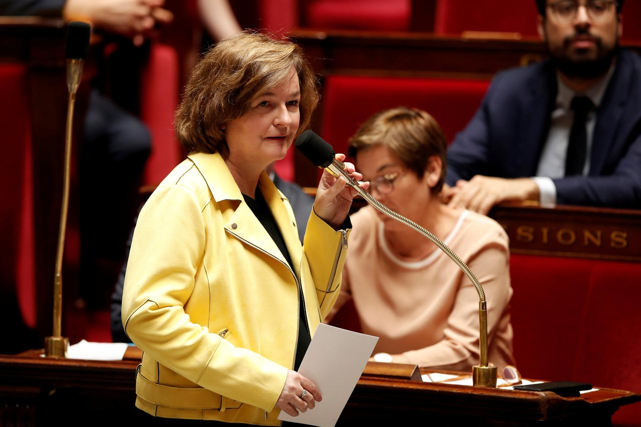 Image result for UK citizens in France to get reciprocal rights post-Brexit, says minister Loiseau