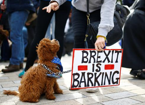 1,000 dogs protest Brexit