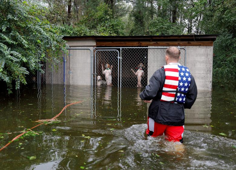 Panicked dogs that were left caged by an owner who fled rising flood waters in the aftermath of Hurricane Florence, are rescued by volunteer rescuer Ryan Nichols of Longview, Texas, in Leland, North Carolina, September 16.     REUTERS/Jonathan Drake