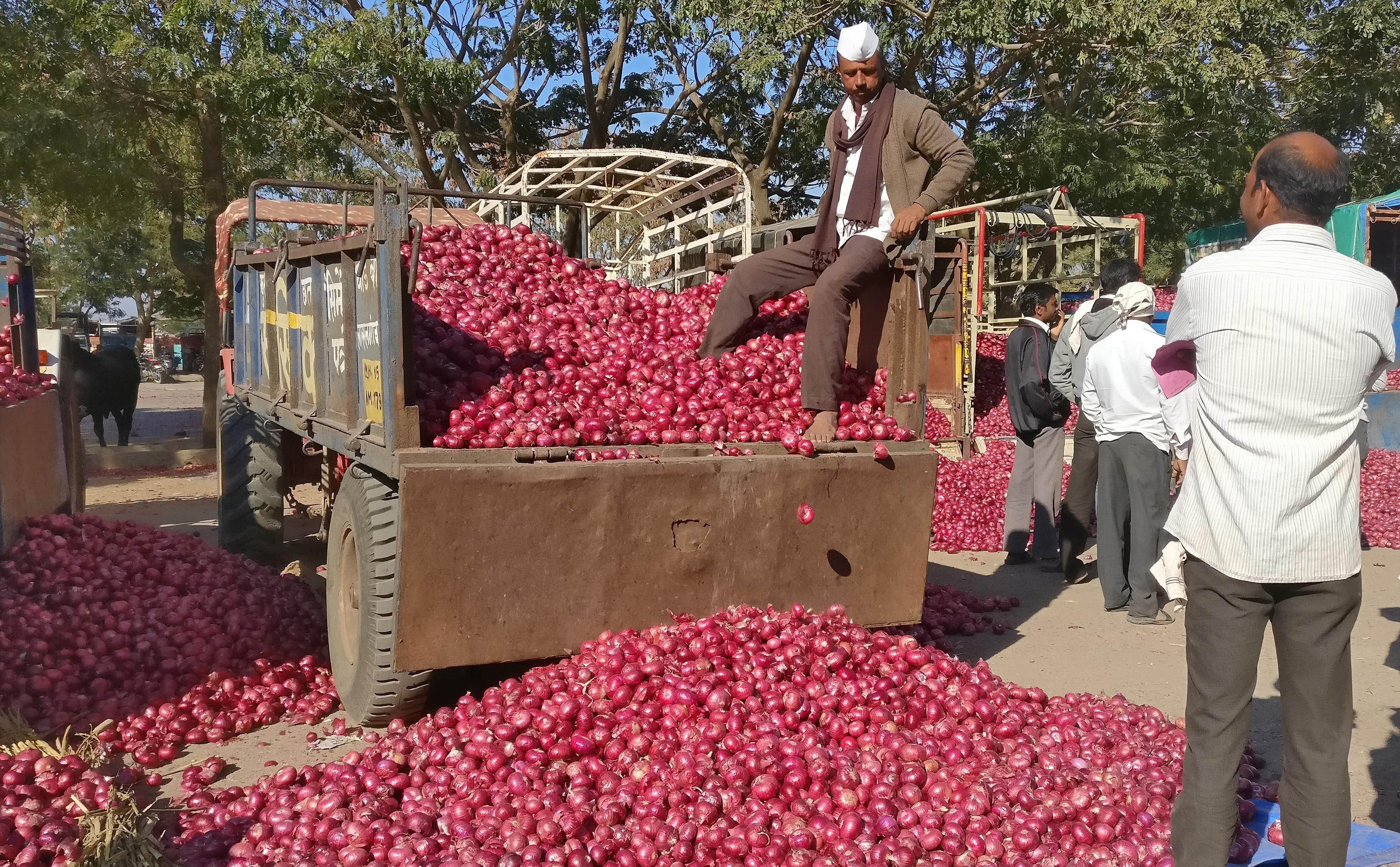 Collapse in India's onion prices could leave Modi smarting in