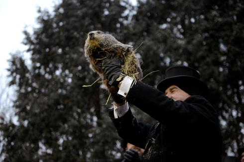 Punxsutawney Phil predicts winter blast will soon end