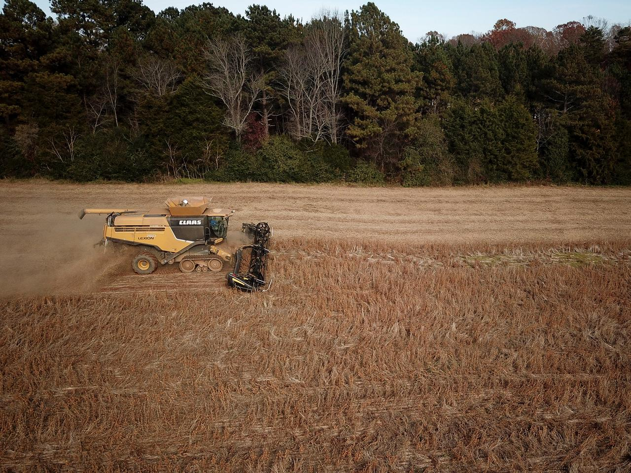 Column: USDA's outlook for U S  soybeans might be too