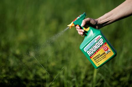 U.S. environment agency says glyphosate weed killer is not a carcinogen