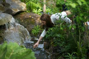 Duchess Kate designs woodland garden