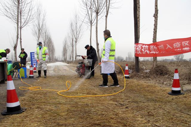 Swine fever toll in China may be twice as high as reported