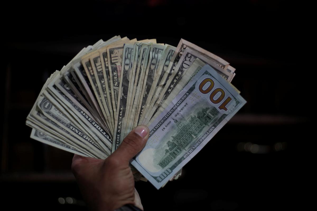 содрал топик, смотреть видео про доллары вот самцы самок