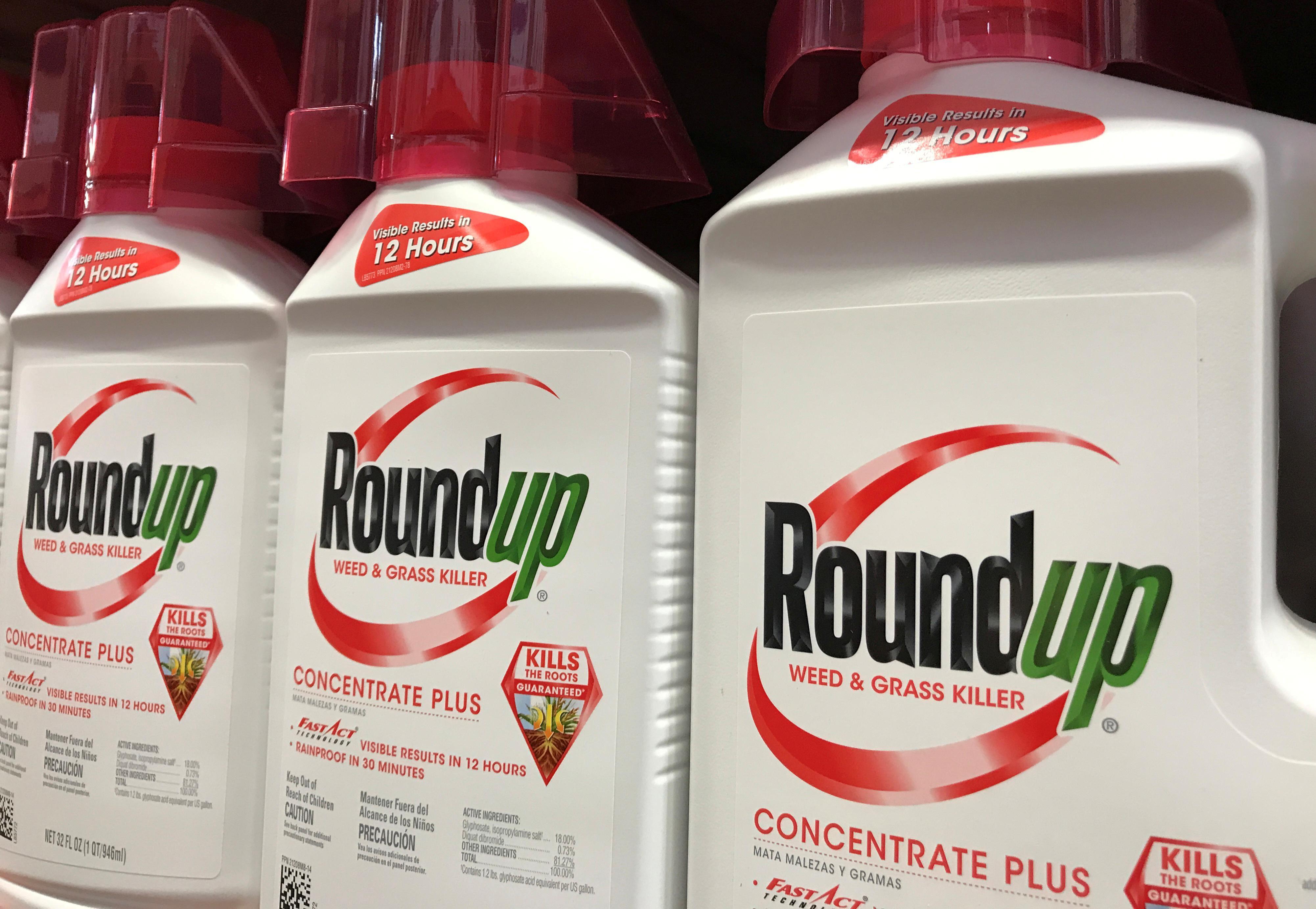 Juror urges U.S. judge to uphold $80 million Roundup verdict against Bayer