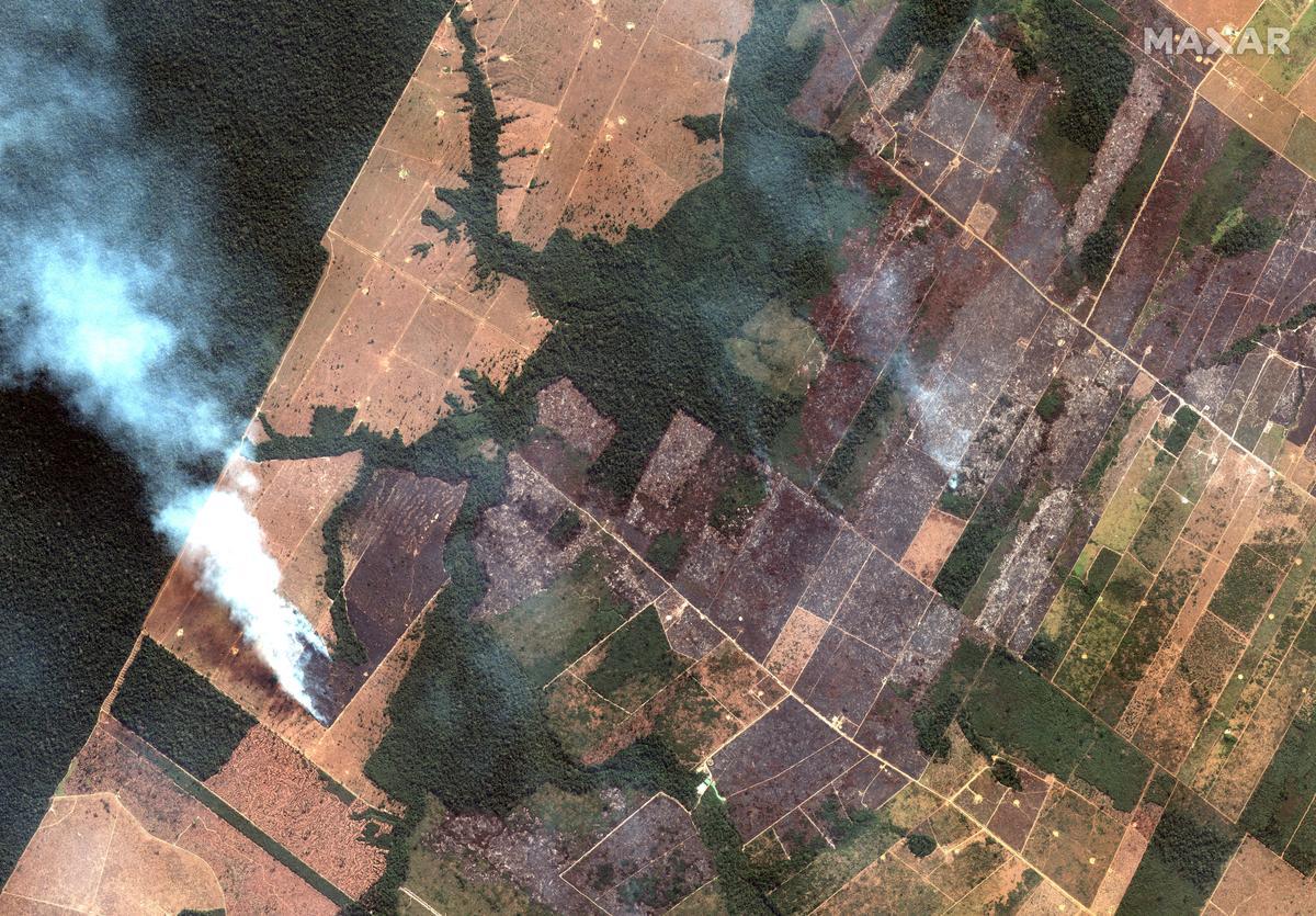 Aanklaers in Brasilië ondersoek die ontbossing en brande van Amazon
