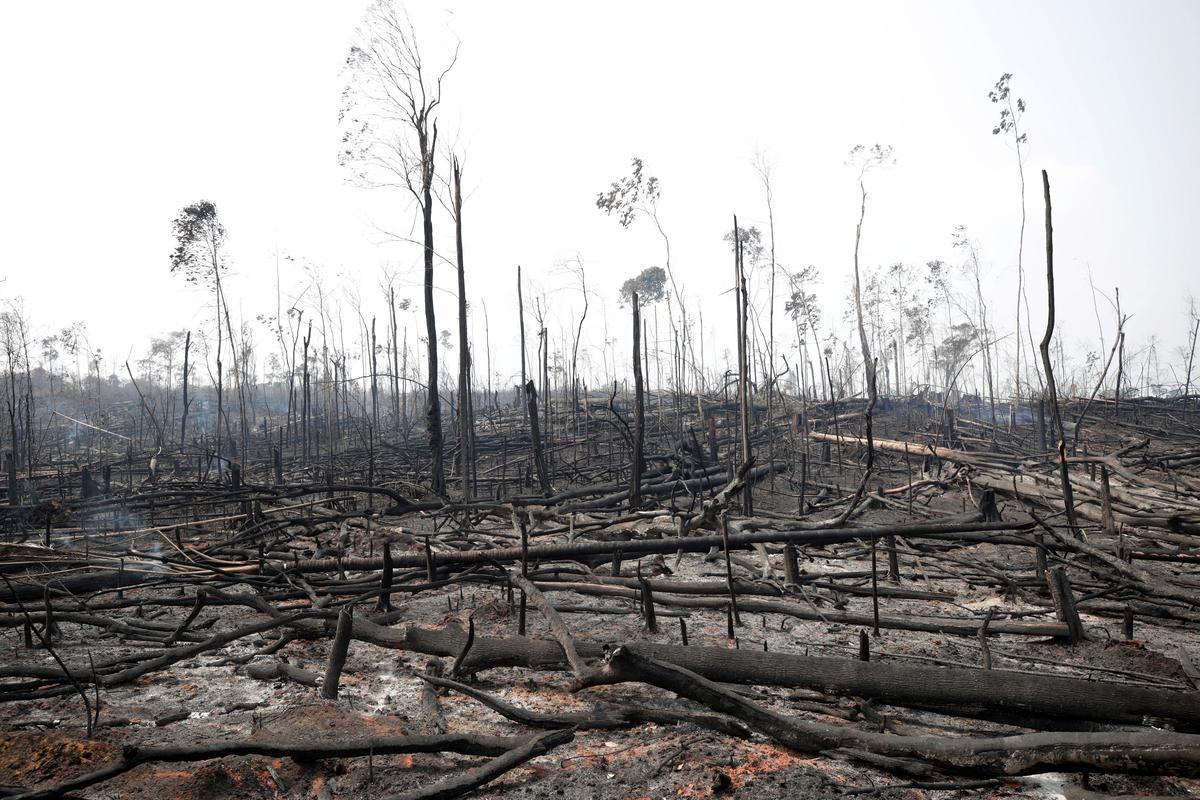 Aangesien die EU weerwraak teen handel dreig, stuur Brasilië die leër om Amazon-brande te beveg