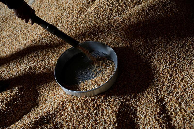 Resultado de imagem para milho e soja reuters