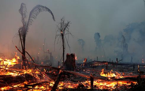 Wildfires rage across the Amazon