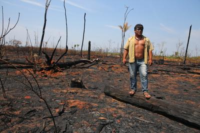 Indigenous tribes grapple with wildfires and deforestation in the Amazon