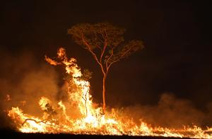 Wildfires rage in Brazil's Amazon