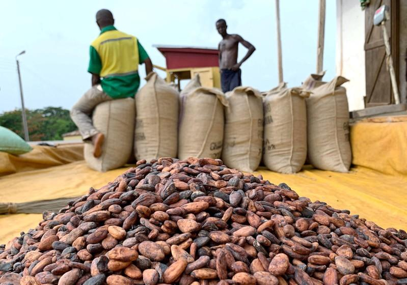 Ghana expected to produce 850,000 tonnes of cocoa in 2019/20...