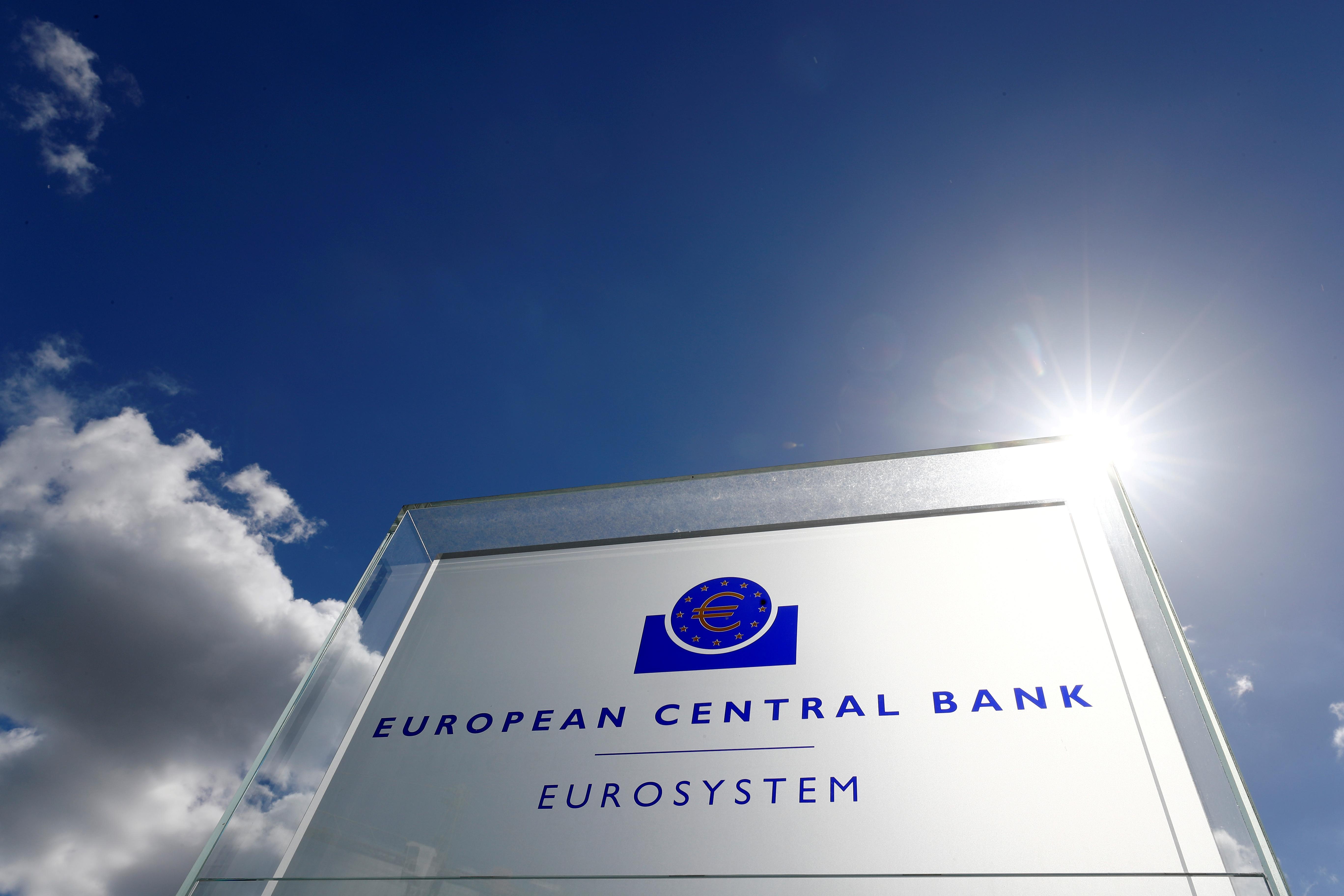 Austria's Holzmann calls for fundamental ECB policy change