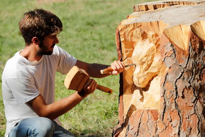 Sculptor transforms Rome's dead trees into art