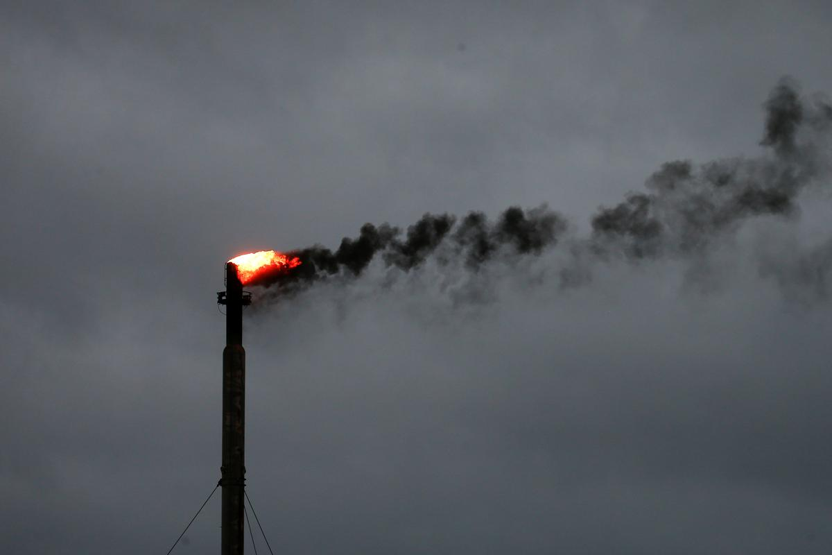 Companies slow to disclose financial costs of climate change: report - Reuters