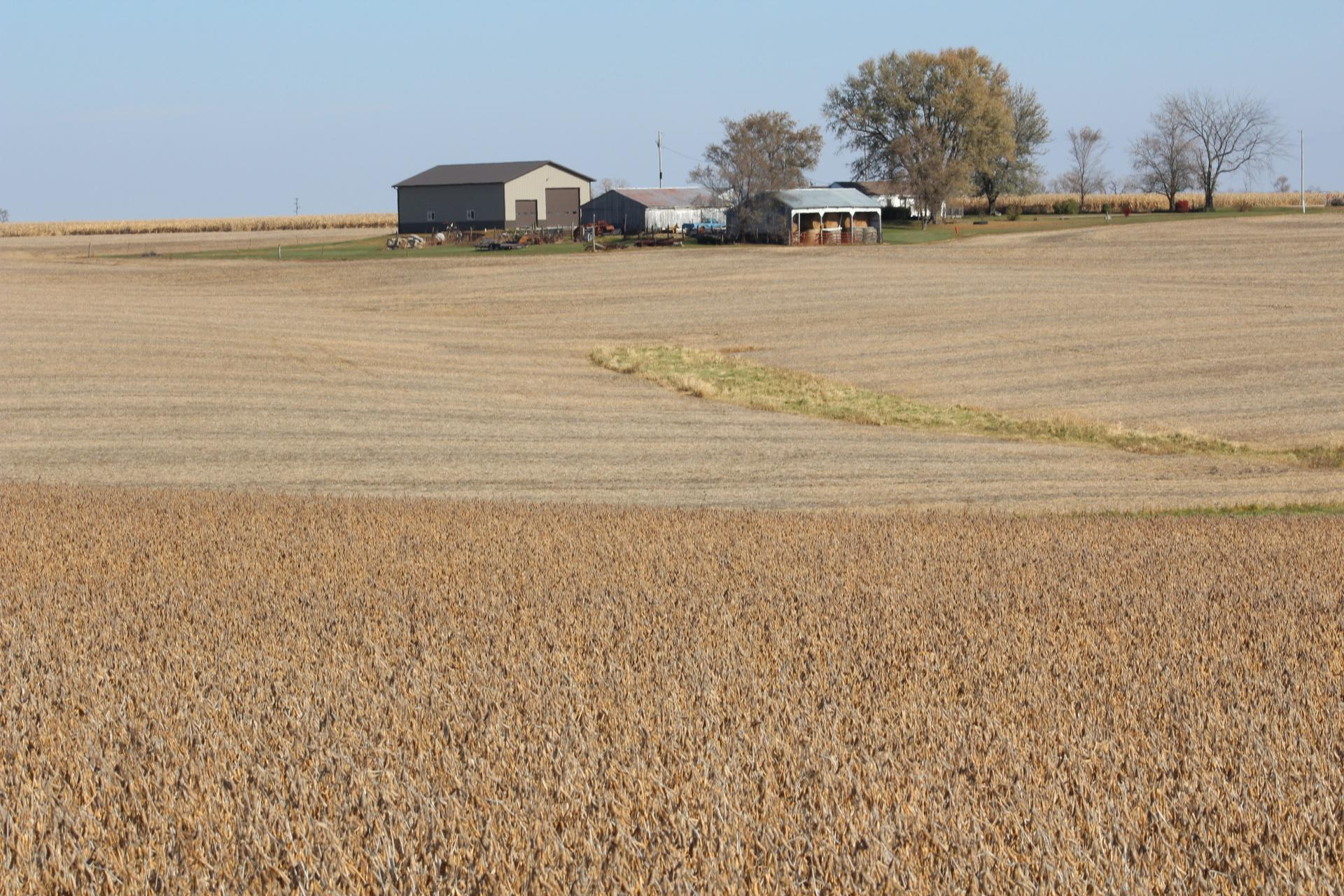 Column: Crop Watch - Terrible N. Dakota soy result, stronger...