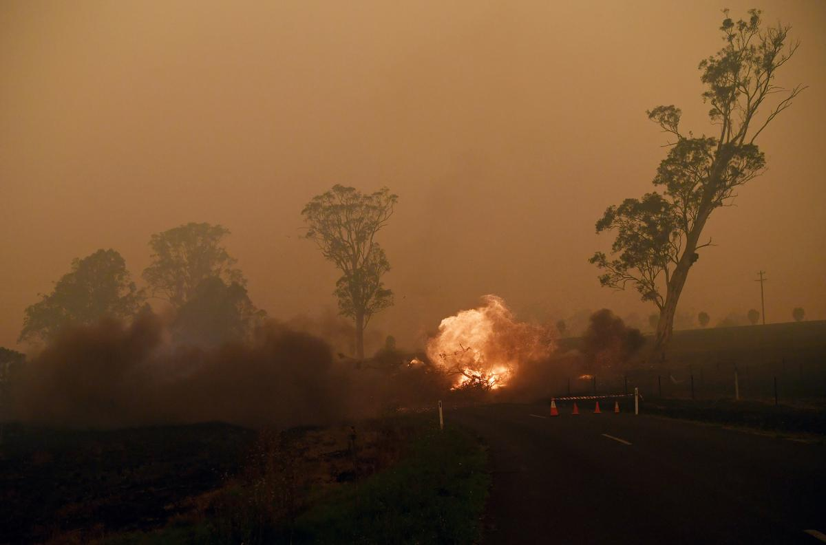 Australian fires hit key dairy regions, adding to woes from drought