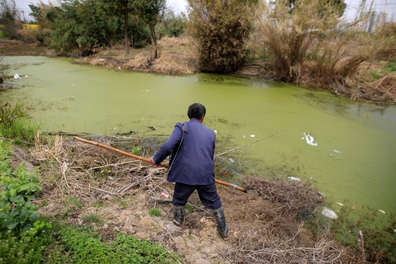 China to curb farming near rivers in push to reverse water...