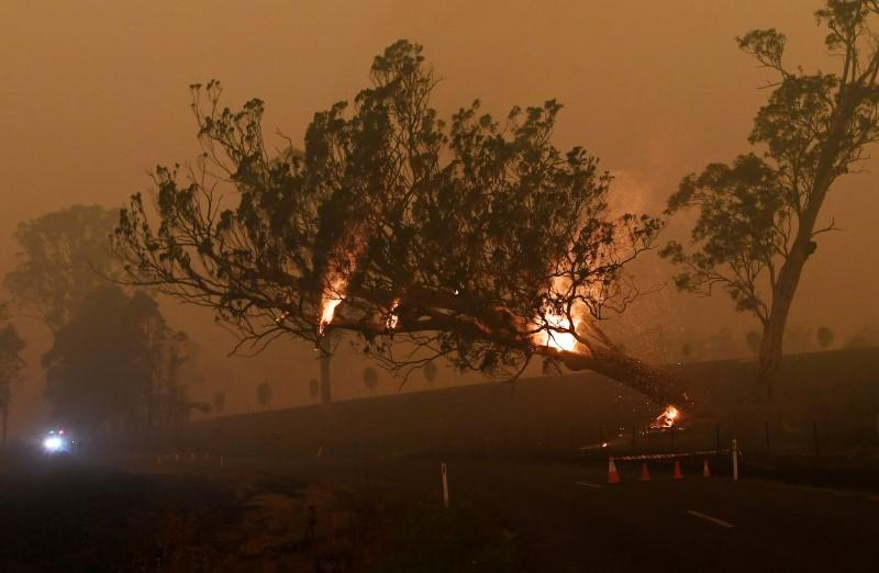 Most Australian executives say climate change will damage...