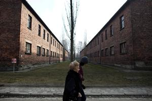 Auschwitz survivor returns to death camp, 75 years later