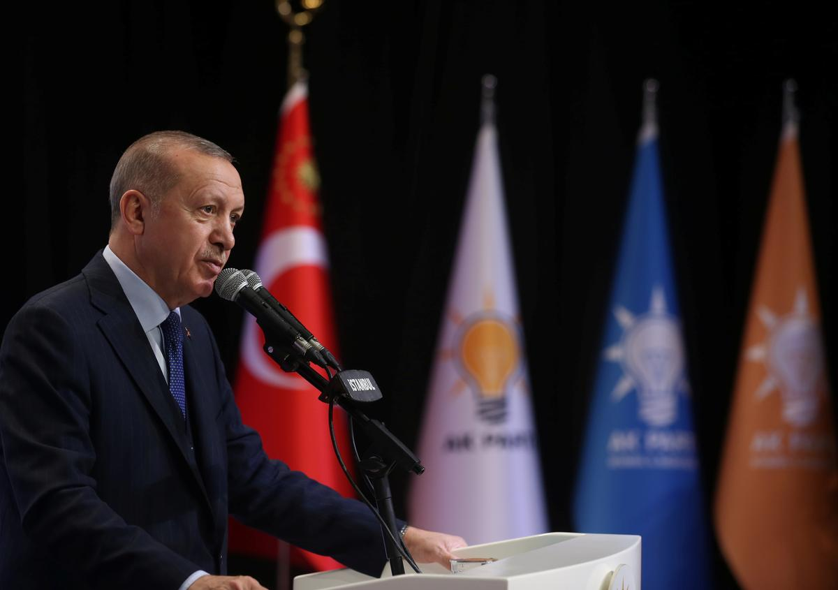 Turkey's Erdogan: Situation in Idlib won't be solved until Syrian forces withdraw