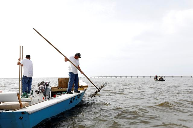 Michael Dasher, Sr., lifts tongs full of oysters from the bottom of Apalachicola Bay as he works with his son Michael Dasher, Jr., in a boat off Eastpoint, Florida, U.S. February 11, 2020.  REUTERS/Colin Hackley
