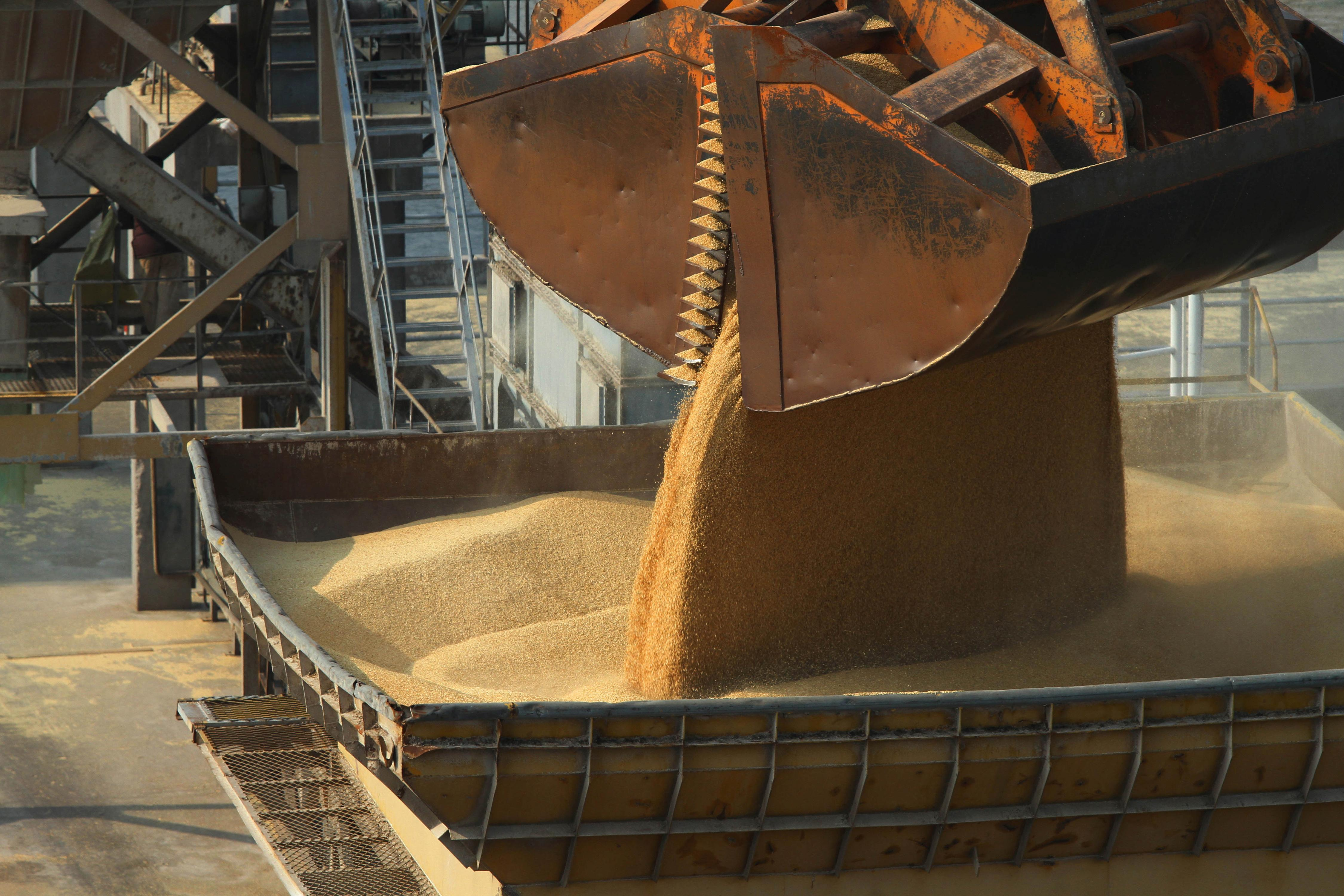 Australia expects China to keep barley, COVID-19 issues separate