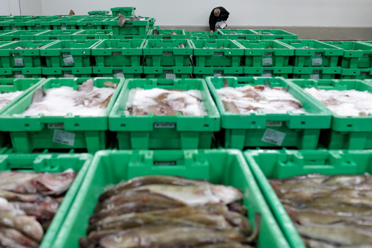 Britain And The Eu Facing Tall Order To Get Fisheries Agreement Eu Adviser Reuters