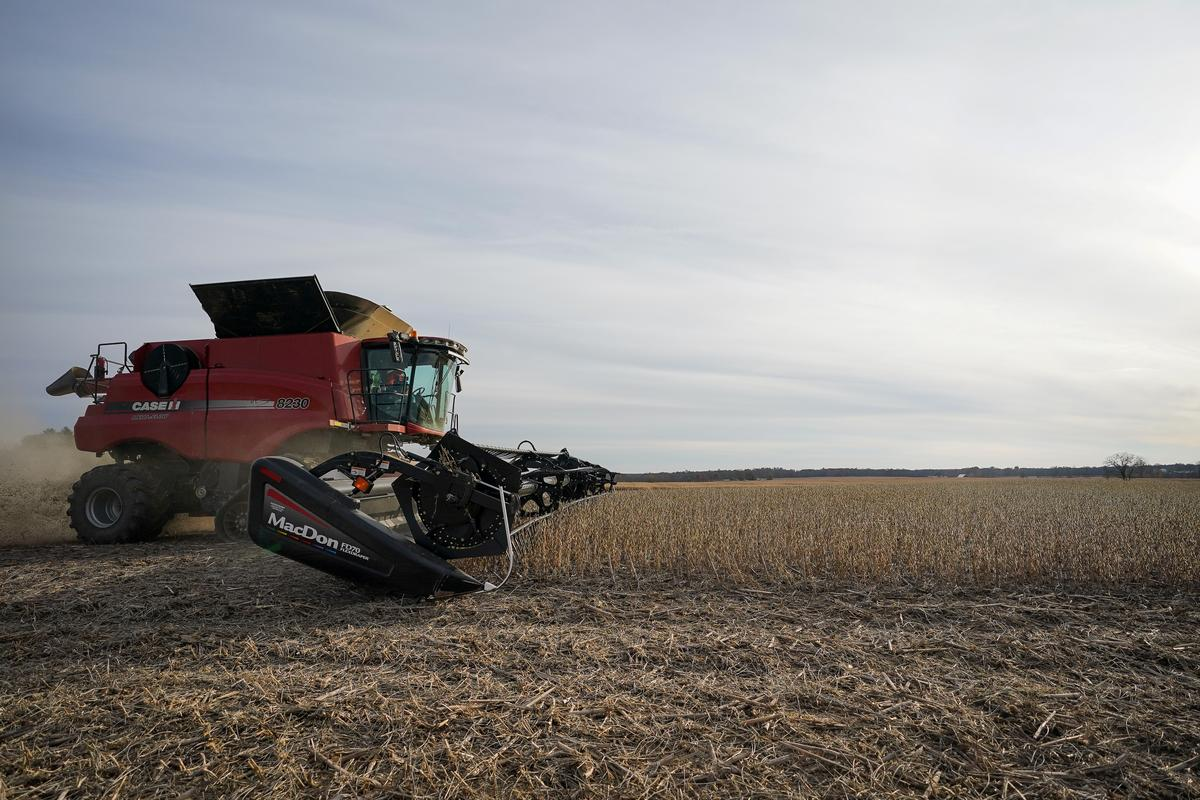 Column: U.S. soy exports to China at 16-year lows so far in 2020