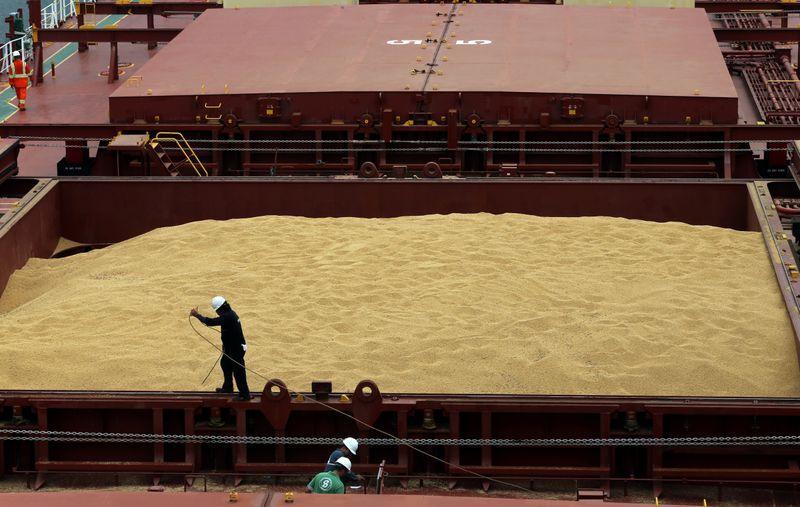 Anec eleva previsão de embarques de soja do Brasil em junho para 13 milhões de toneladas