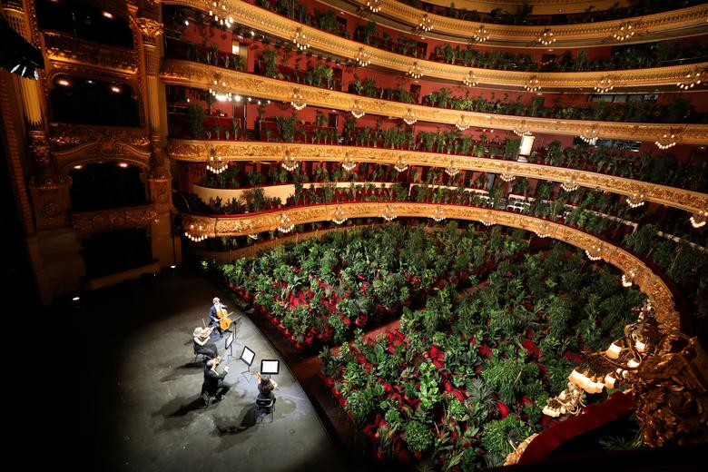 Nursery plants are seen placed in people's seats during a rehearsal as Barcelona's Gran Teatre del Liceu opera reopens its doors with a concert for plants, to raise awareness about the importance of an audience after the coronavirus lockdown, in Barcelona, Spain June 22, 2020. REUTERS/Nacho Doce