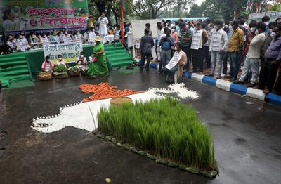 Indian farmers protest farm bills